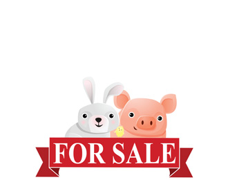 Baby Animals For Sale
