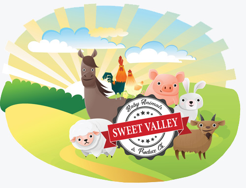 Sweet Valley Baby Animals